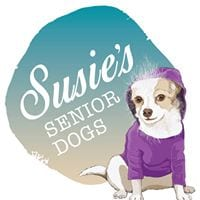 susies-sr-dogs