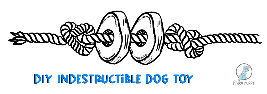 Illustration of how a sweet potato dog treats on a rope finished product will look