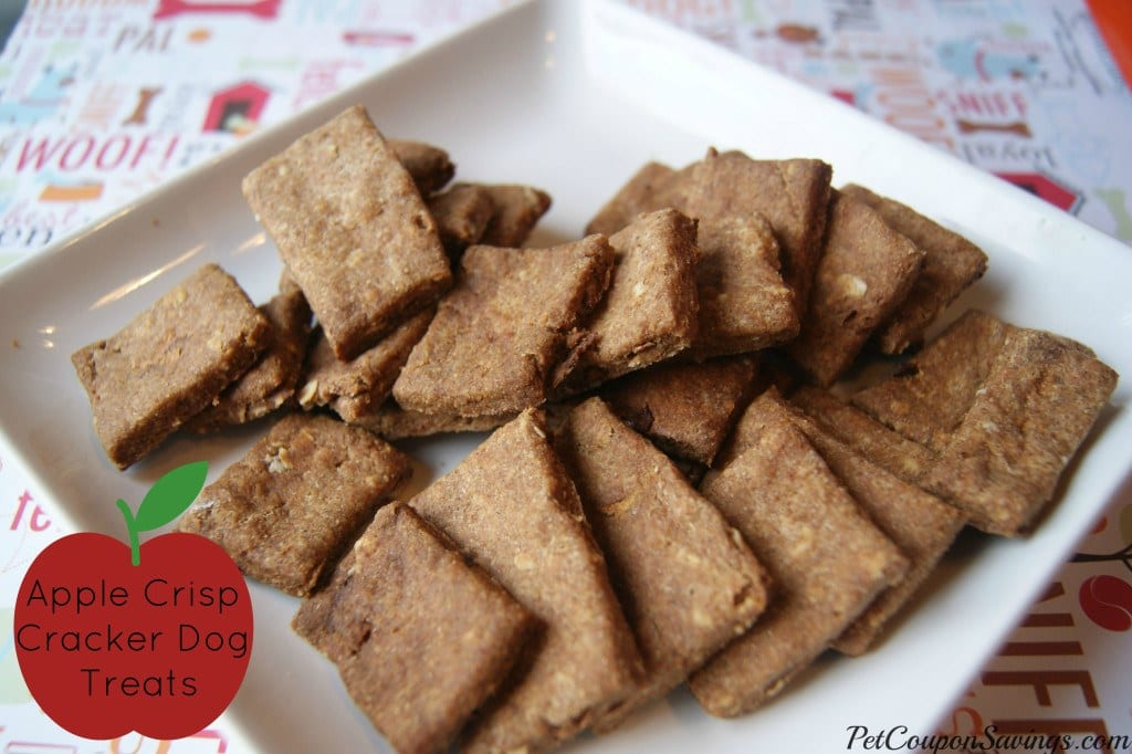 Quick Easy Homemade Dog Treats Recipes