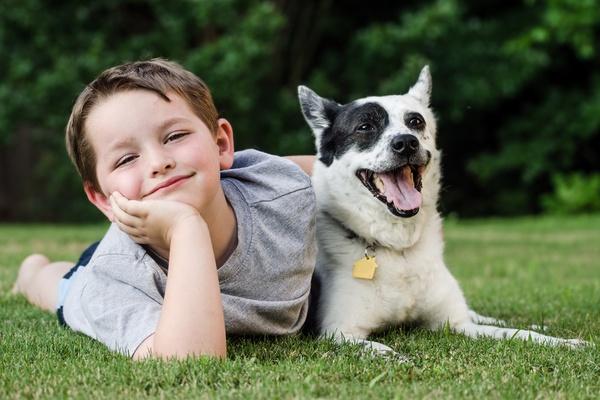 Always supervise a child around a new dog.