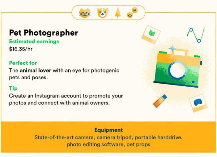 Pet Photographer stats