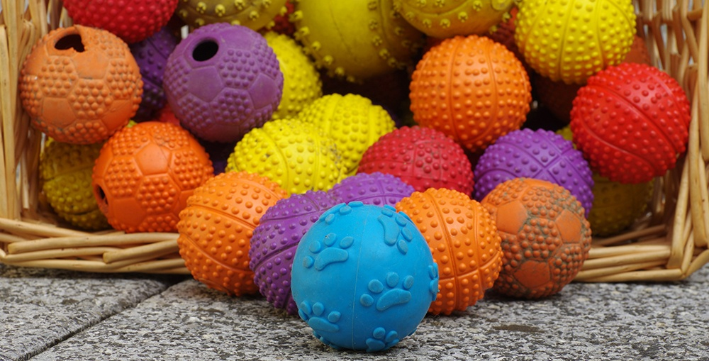 assortment of balls for dogs