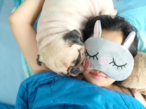 Pug with young woman sleeping