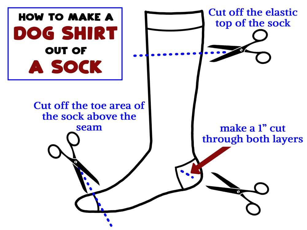 Graphic instructions for How to make a dog shirt out of a sock