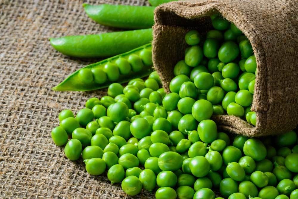 sack of green peas spilled on burlap
