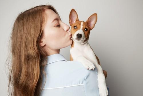 basenji dog with woman