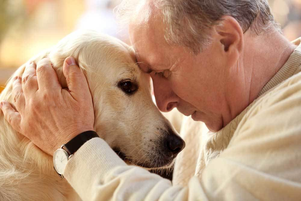 Man with his forehead to the forehead of his dog.