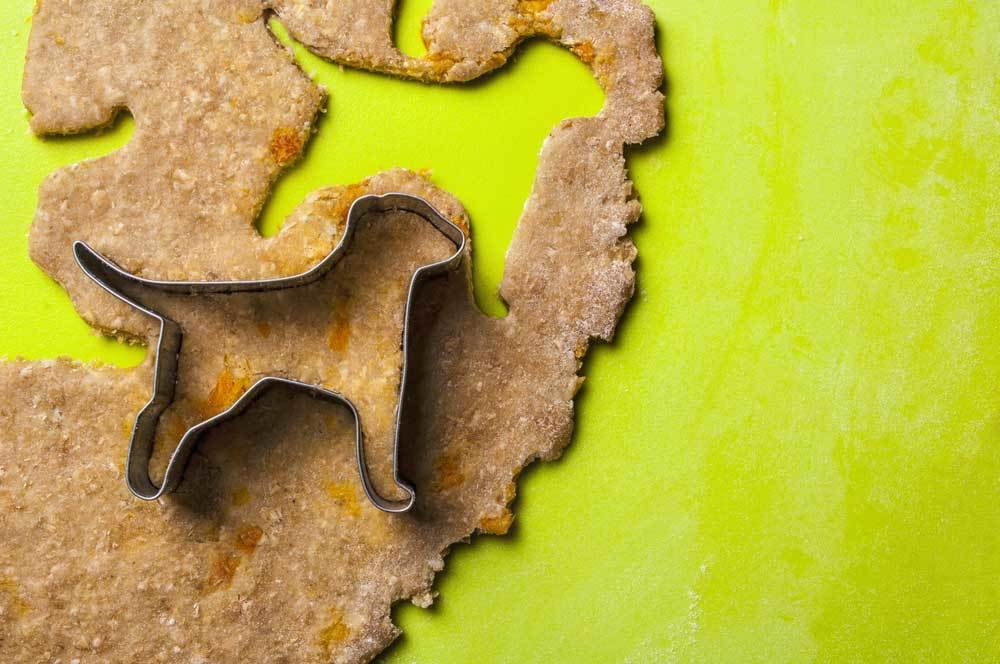 Dog shaped cookie cutter cutting dough on lime neon green background