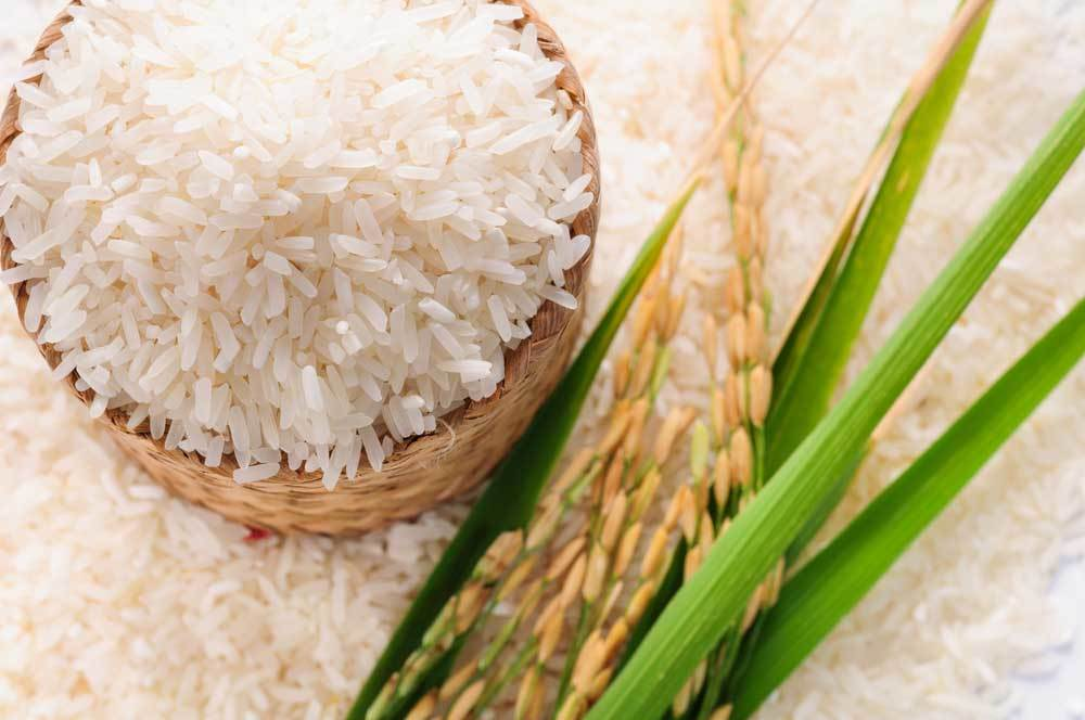 Jasmine Rice in a woven bowl with rice stalks and pile of rice