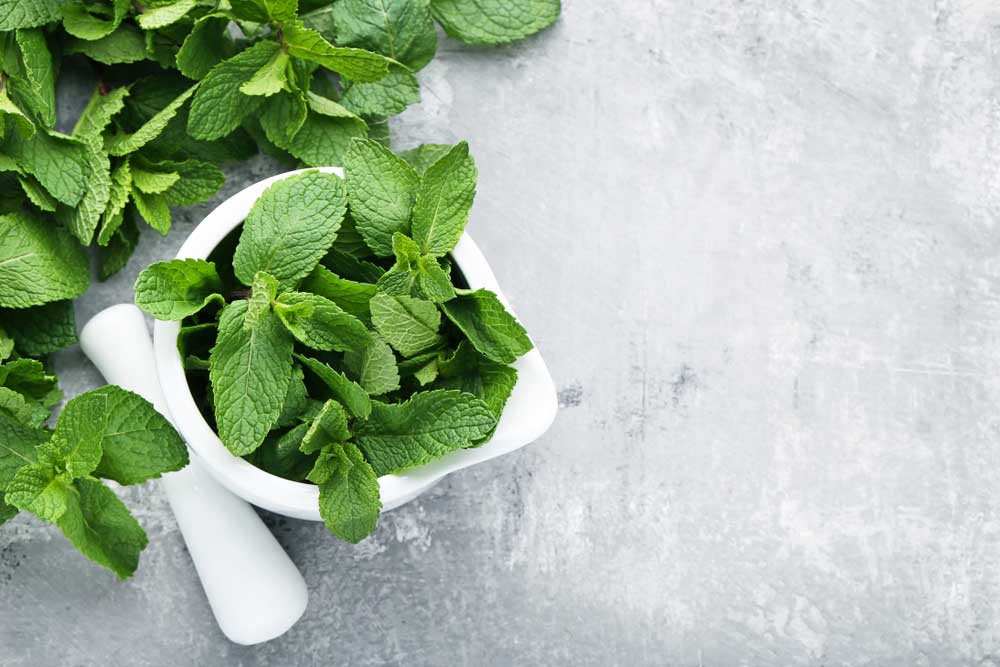 Mortar and pestle filled with mint leaves on a marbled table top