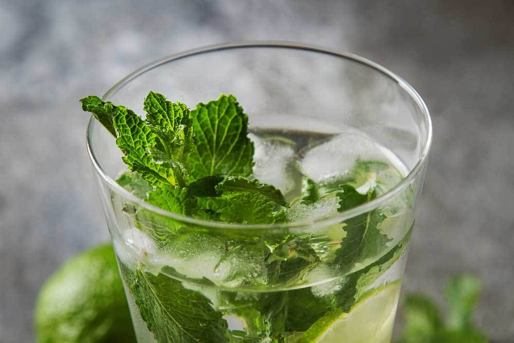 Close up of mint in glass of ice water