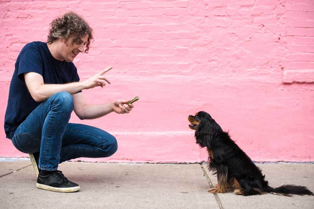 Man kneeling down with treat in front of sitting dog with pink wall in background