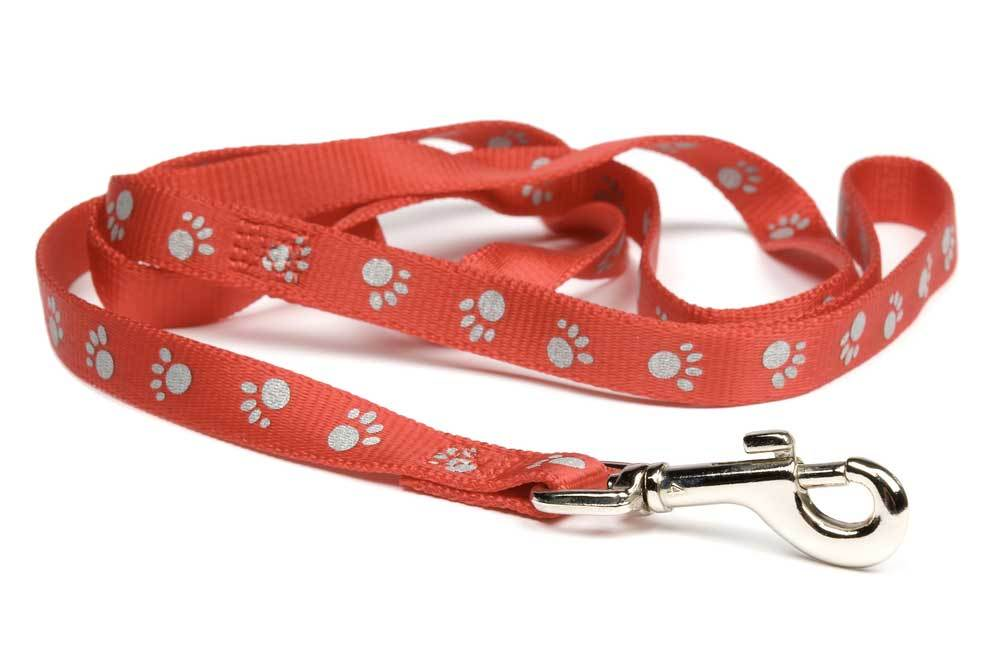 Red dog leash with paw prints on a white background