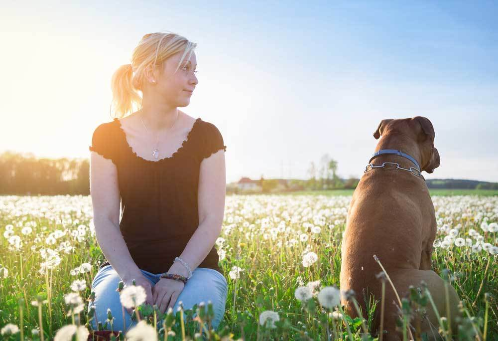 Girl and dog sitting in a field of dandelions with backs to each other with girl looking over shoulder at dog.