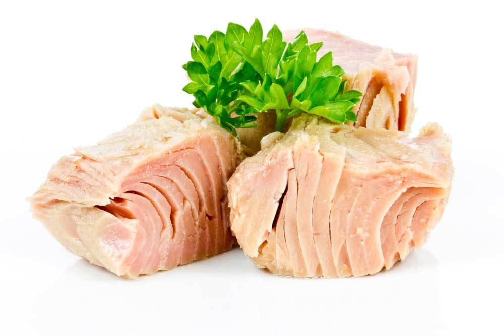 chunks of tuna on white background