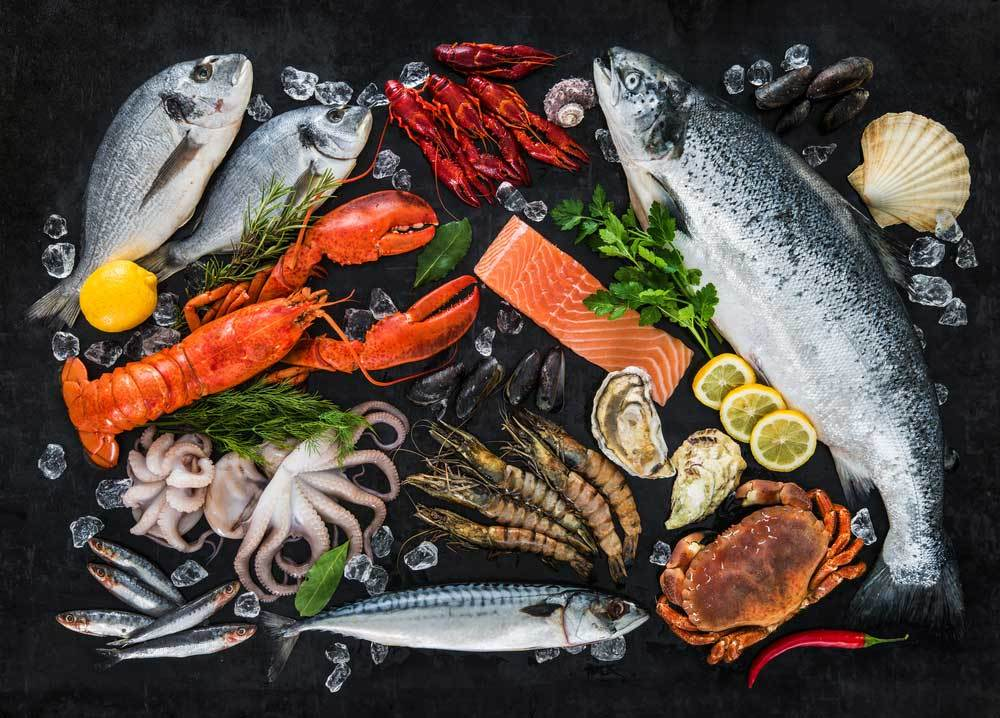 variety of seafood on black background.