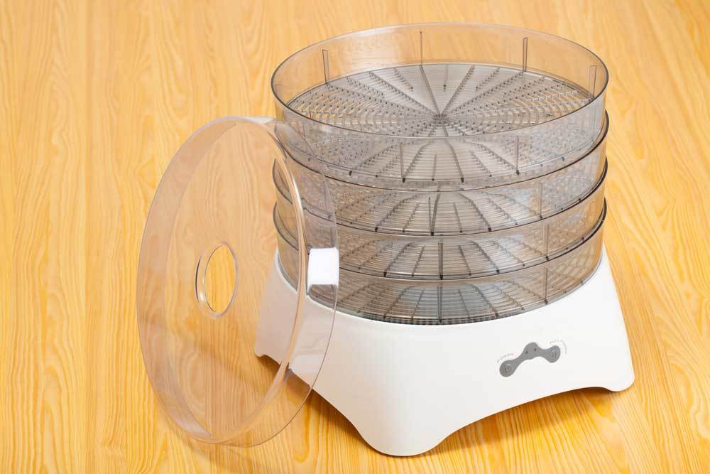4 tray food dehydrator on a wooden counter top