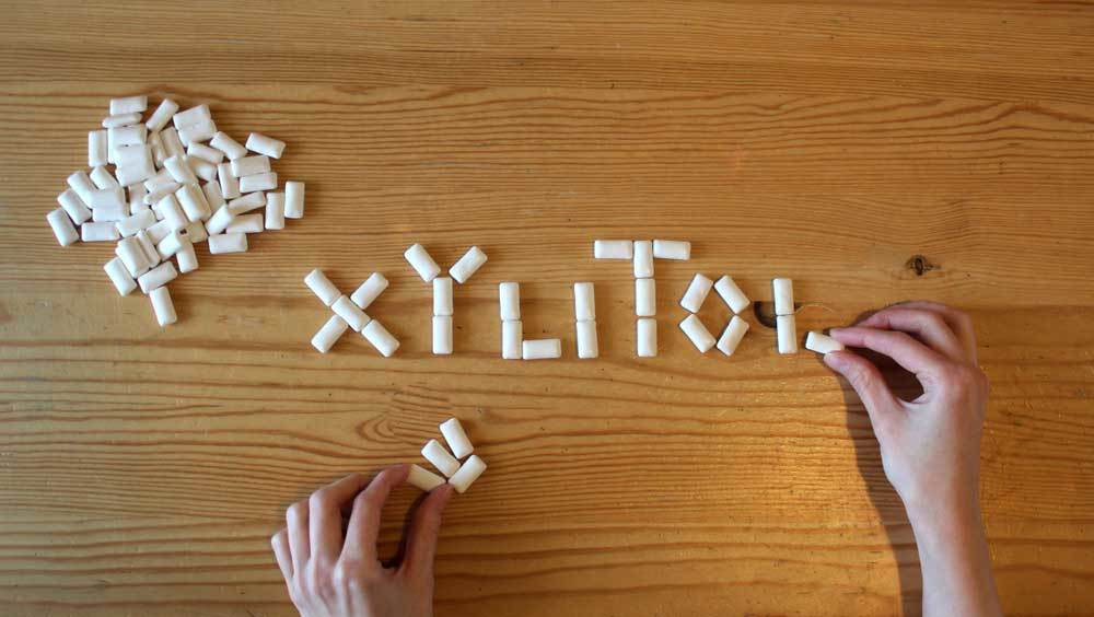 rectangle pieces of white gum with  hand spelling xylitol out of gum