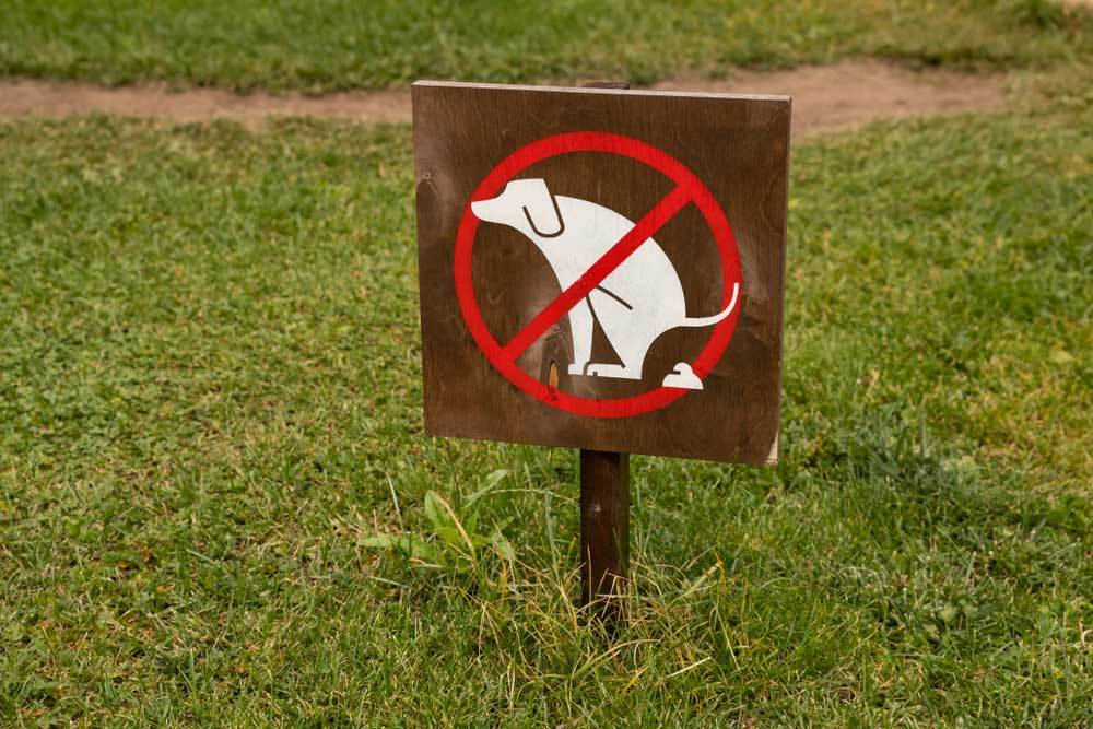 sign with dog pooping with red circle and crossbar