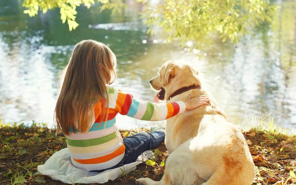 Small girl sitting with golden retriever next to body of water