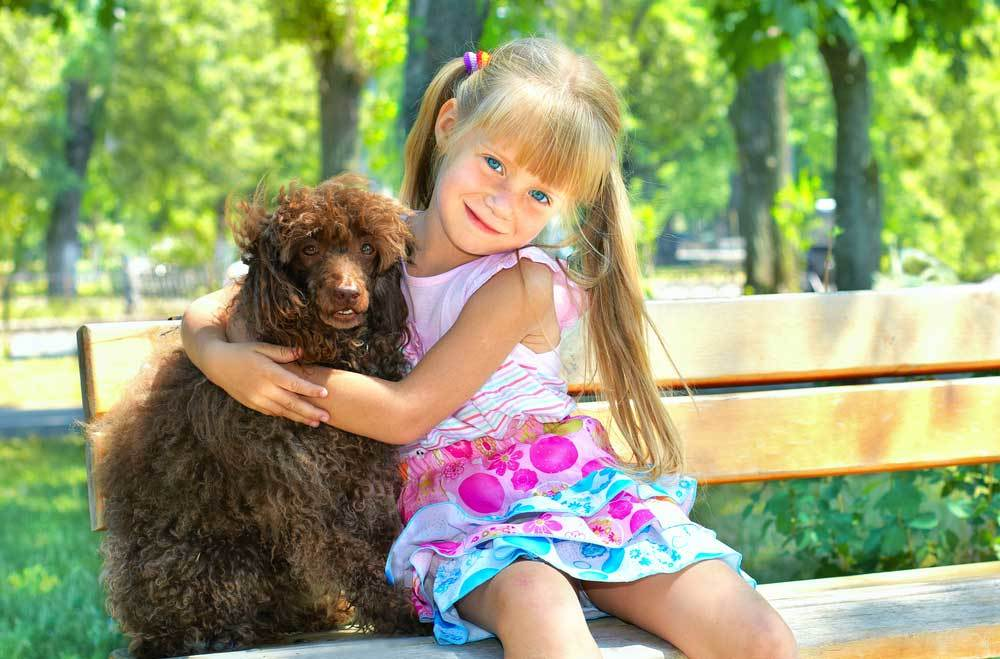 Young girl hugging Poodle on a park bench
