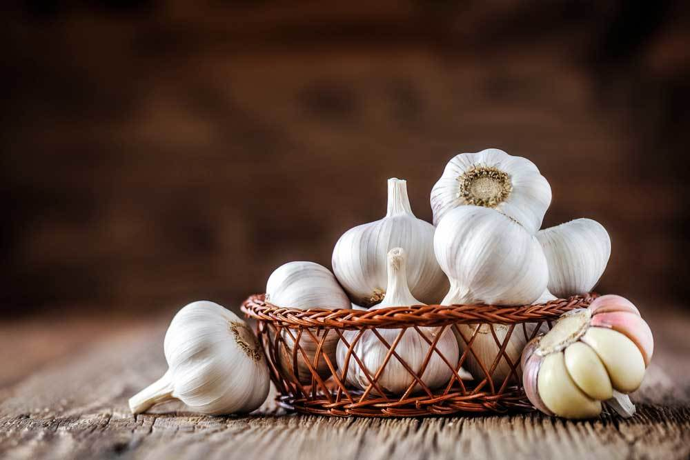 Garlic bulbs in a basket on a rough wooden table