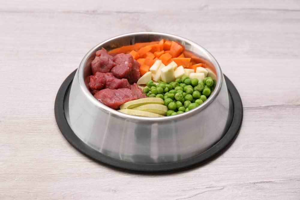 fresh food cubed in a metal dog bowl
