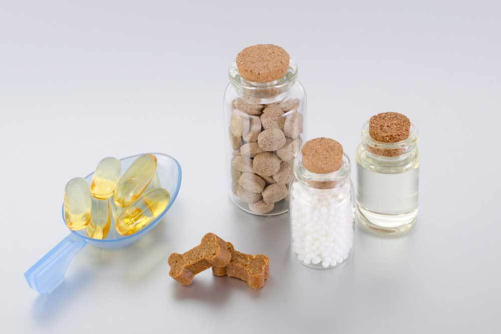 variety of supplements for dogs