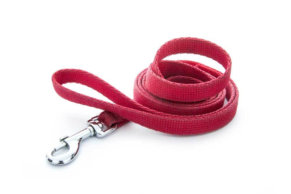 red dog leash on white background