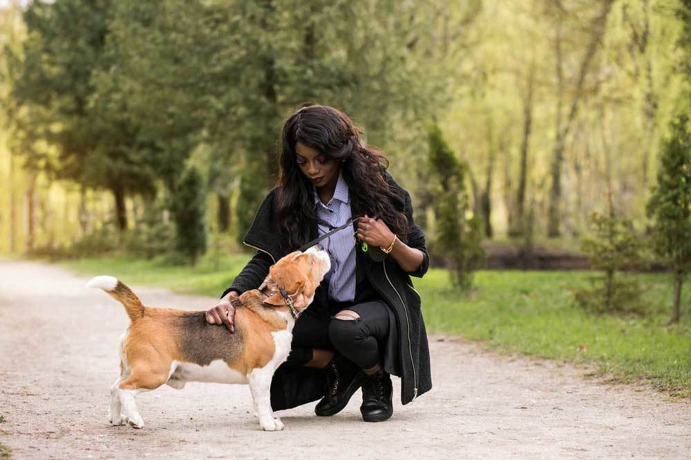 Woman kneeling to pet dog on a leash