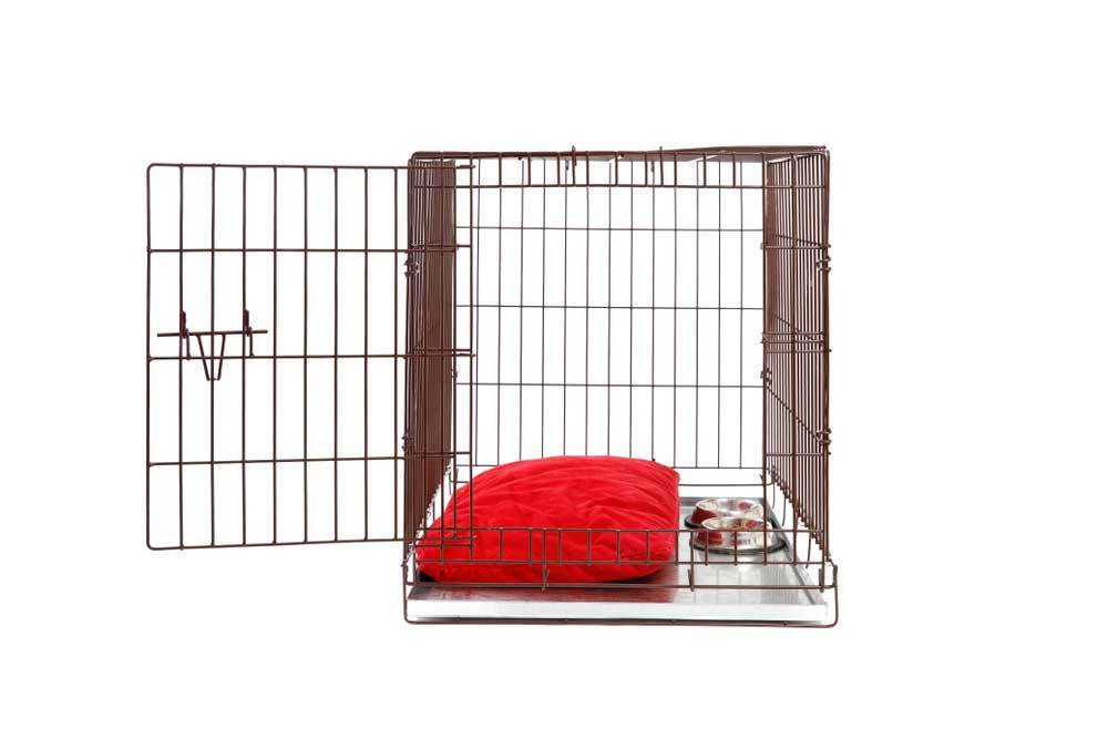 Metal dog crate with red pillow and dog bowls with door open.