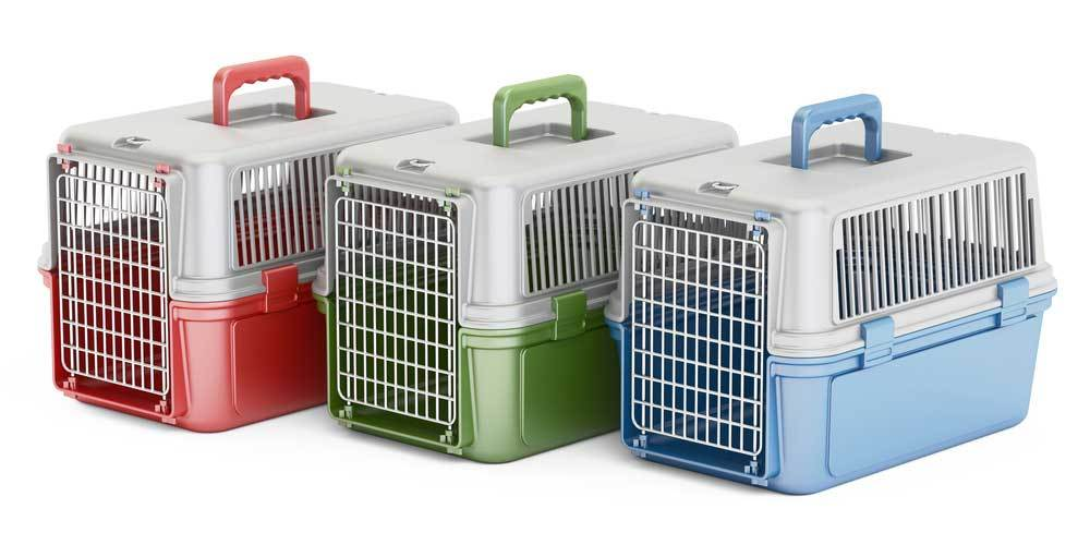 3 Plastic dog crates in red, green and blue