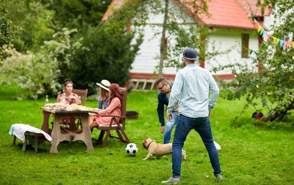 Group of friends around a picnic table and playing ball with the dog