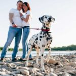 Man and woman standing on rocky shore with dalmation