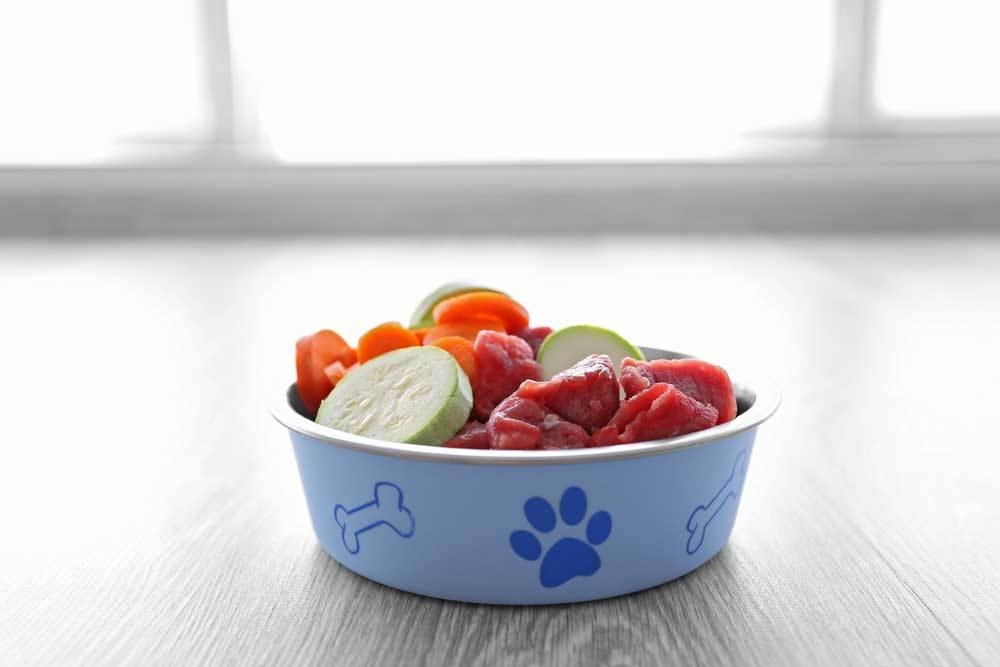Meat and veggies in a blue dog food bowl