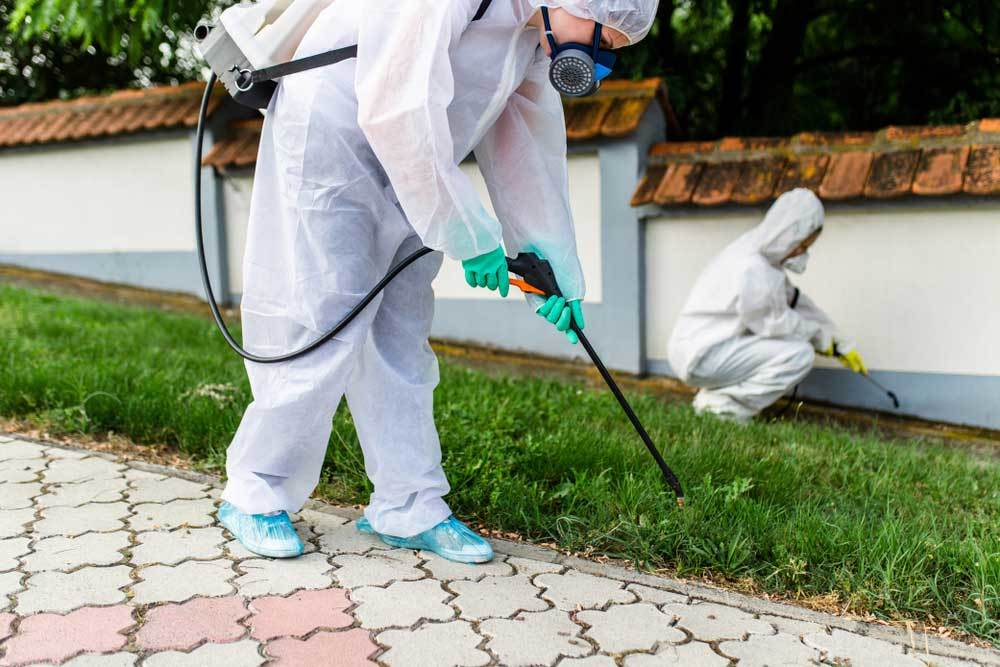 people in white suits spraying pesticides