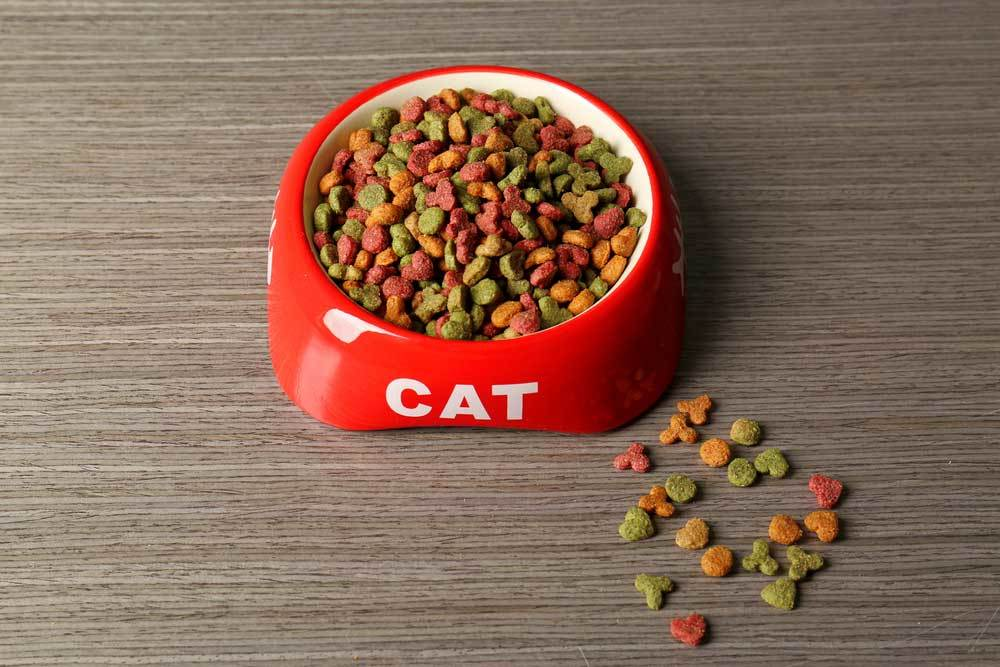 Red bowl that says cat with dry cat food spilling over