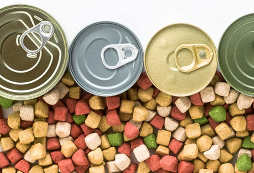 Top view of canned dog food with spilled kibble
