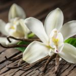 Vanilla flowers and beans on a dark wood table