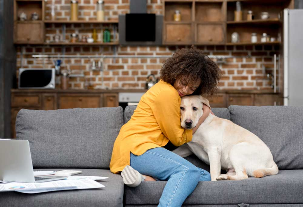 Woman cuddling yellow lab on a couch