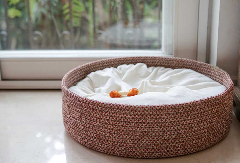Dog bed with bone in it next to a window