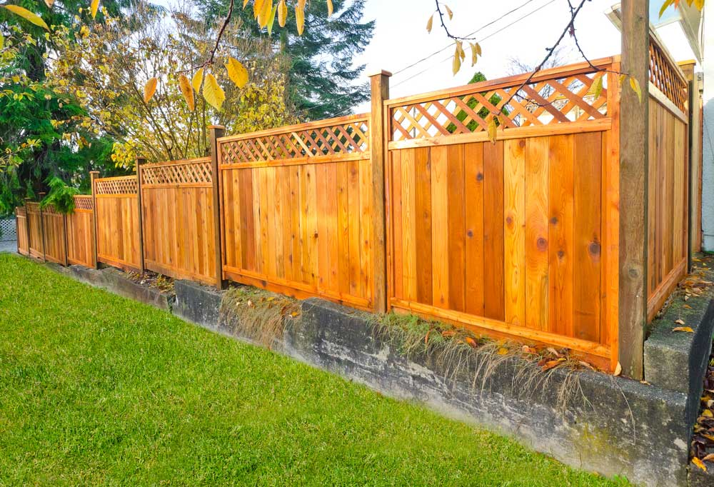Privacy fence to block the view of a back yard