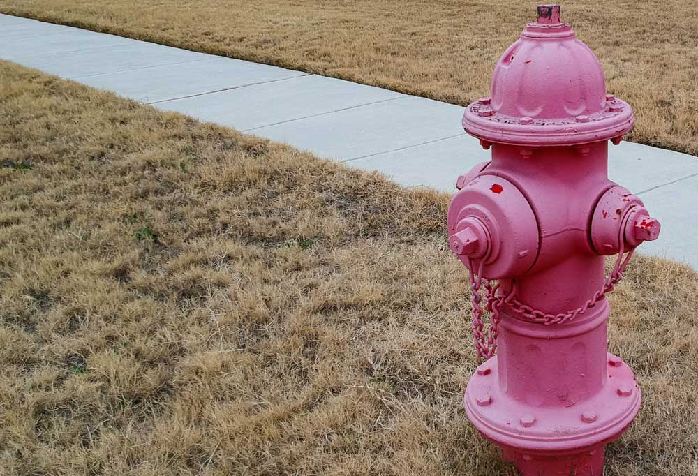 Red fire hydrant in dead grass next to sidewalk