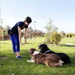 Woman training 2 dogs outdoors