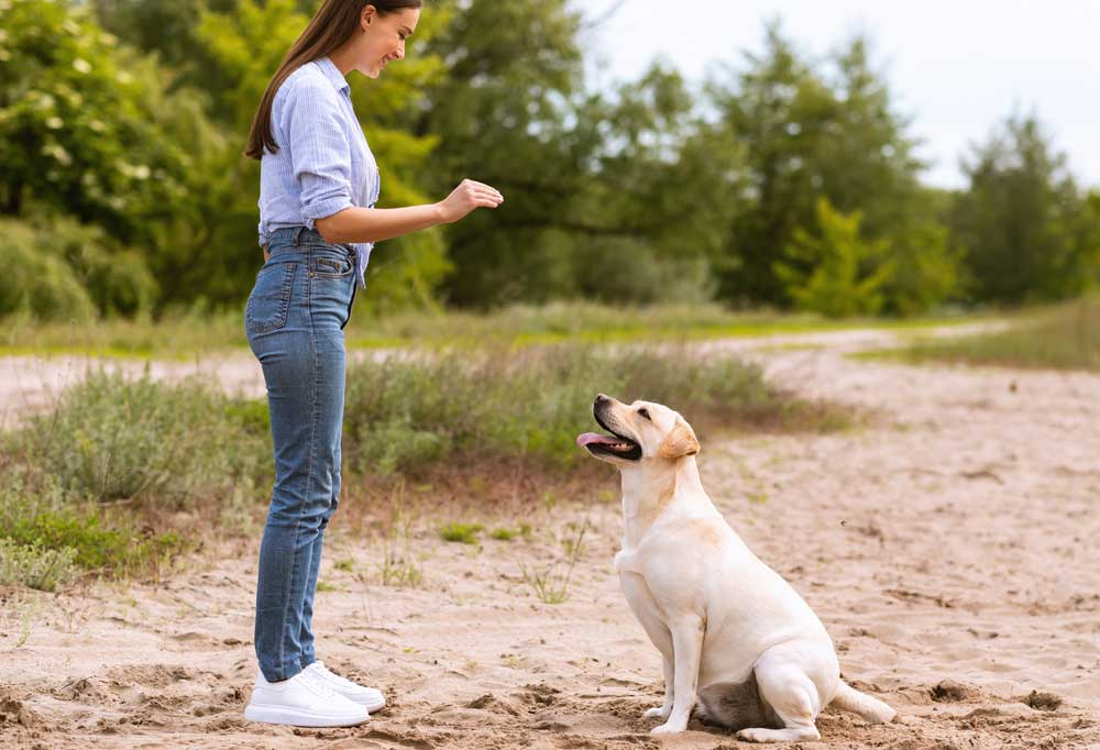 Woman showing a dog a hand signal