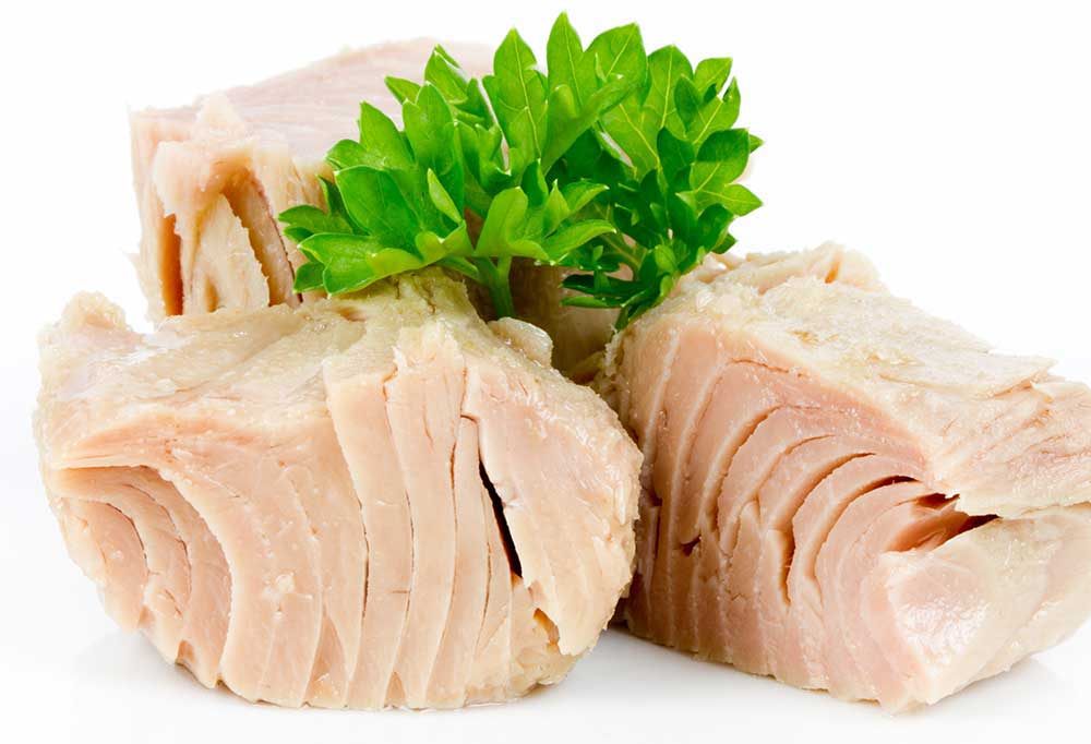 Chunks of tuna on a white background with a parsley garnish
