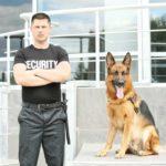 Security guard with German Shepherd