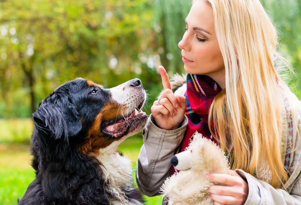 Woman holding up one finger to dog while holding dogs toy