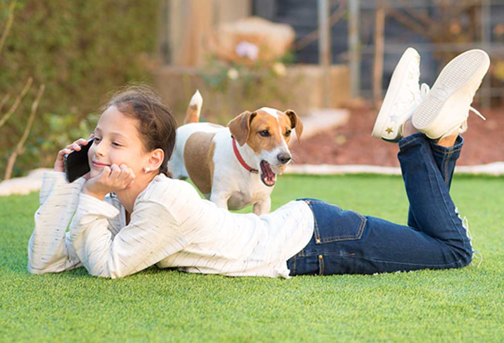girl laying on stomach in grass talking on phone while jack russell terrier brings her a ball