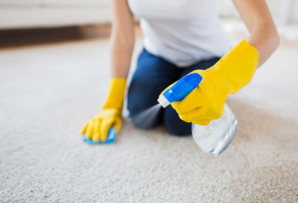 Person on their knees scrubbing carpet with a sponge and spray bottle